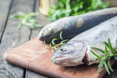Two rainbow trout on a board. Two rainbow trout on a cutting board with herbs, ready for cooking Stock Image
