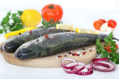Two rainbow trouts with herbs and peppercorns Stock Photography
