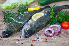 Two rainbow trouts with herbs and peppercorns Royalty Free Stock Image