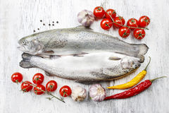 Two rainbow trouts, tomatoes and chili peppers Royalty Free Stock Photography