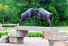 Two rams on the bridge in Druskininkai city Royalty Free Stock Photography