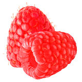 Two raspberries isolated on white background with clipping path. Isolated raspberry. Two raspberries on white background as package design element. Healthy stock photos