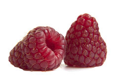 Two  raspberries on a white background Stock Images