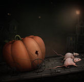 Two rats and a pumpkin. stock illustration