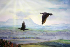 Two ravens fly. Royalty Free Stock Image