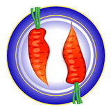 Two raw carrots on a plate. Negative space - a slender female silhouette Royalty Free Stock Image