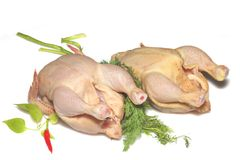 Two raw chickens isolated Stock Photography