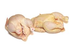 Two raw chickens isolated Stock Photos