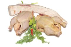 Two raw chickens isolated stock image