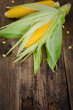 Two raw corn on dark wood table with empty place on the bottom Stock Photos