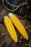 Two raw corn without leaves on dark wood table, close up view Stock Image