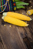 Two raw corn without leaves on dark wood table with empty place Stock Images