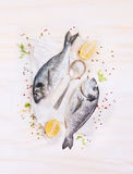 Two raw dorado fish with lemon, spices and spoon on paper, composing on white wooden background,. Top view stock photography
