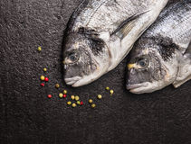 Two raw dorado fish with Peppercorn on dark stone background, top view Stock Photo