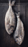 Two raw dorado fishes hanging on rope at  dark rustic wooden background Royalty Free Stock Photos