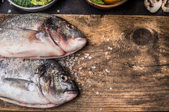Two raw dorado fishes on rustic wooden background. Top view Stock Images