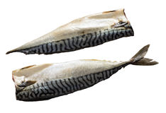 Two raw Fillets of mackerel fish isolated on white background Royalty Free Stock Photo