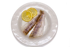 Raw fish filets with lemon Royalty Free Stock Images