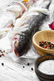 Two raw fish Stock Photography