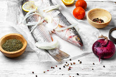 Two raw fish Royalty Free Stock Photography