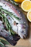 Fresh trout with lemons and greens. Two raw fish. Fresh trout with lemons and greens Royalty Free Stock Images