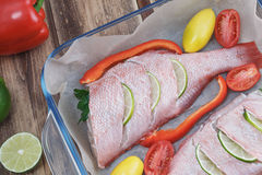 Two raw fishes of bass with lime. By tomatoes, pepper, onion, basil, by a garlic, parsley and spices stock images