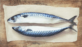 Two raw fresh mackerel fishes on a paper on wooden table. Two raw fresh mackerel fishes on a paper  old wooden table toning Stock Photo