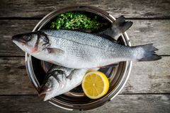 Two raw fresh sea bass in a bowl with thyme and lemon Royalty Free Stock Photography
