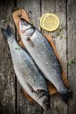 Two raw fresh sea bass on a cutting board with lemon and sea salt Stock Photos