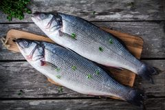 Two raw fresh sea bass on a cutting board with thyme Royalty Free Stock Images