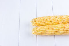 Two raw maize cobs Stock Image