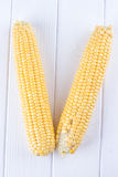 Two raw maize cobs Stock Photo