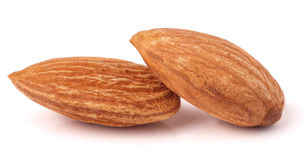 Two raw peeled almonds close up macro Stock Photography