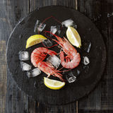 Two raw prawns with lemon and ice cubes, selective focus. Two raw prawns with lemon and ice cubes on a blackboard, selective focus Stock Photography
