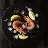 Two raw prawns with lemon and ice cubes, selective focus. Two raw prawns with lemon and ice cubes on a blackboard, selective focus Stock Photos