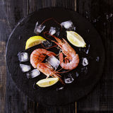 Two raw prawns with lemon and ice cubes, selective focus. Two raw prawns with lemon and ice cubes on a blackboard, selective focus Stock Images