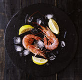 Two raw prawns with lemon and ice cubes, selective focus. Two raw prawns with lemon and ice cubes on a blackboard, selective focus Royalty Free Stock Image