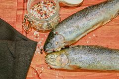 Two raw rainbow trouts with spices on wooden board. Healthy food and dieting concept. Close-up.  stock photos