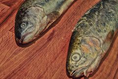 Two raw rainbow trouts on wooden board. Healthy food and dieting concept. Add dark contrasts.  royalty free stock photo