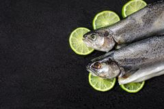 Two raw river trouts, lime slices, spices and herbs on a black stone background. royalty free stock photo