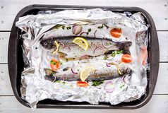 Two raw river trouts with thyme, lemon, red onion and tomatoes in foil Stock Images
