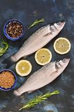 Two raw sea bass fish with spices, lemon and rosemary on a blue abstract background. View from above. Two raw sea bass fish with spices, lemon and rosemary on a Royalty Free Stock Photo