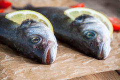 Two raw seabass fish with lemon close-up Royalty Free Stock Images