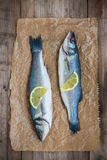 Two raw seabass fish with slice of lemon on wooden background Royalty Free Stock Photos