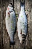 Two raw seabass with fresh thyme on wooden table Stock Images