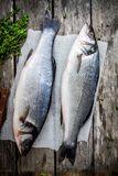 Two raw seabass with fresh thyme on wooden table Royalty Free Stock Photo