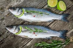 Two raw seabass with lime and rosemary Stock Images