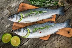 Two raw seabass with lime and rosemary Royalty Free Stock Image