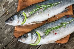 Two raw seabass with lime and rosemary Royalty Free Stock Photo