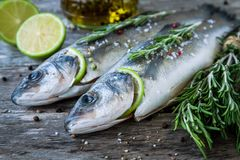 Two raw seabass with lime and rosemary Stock Photo